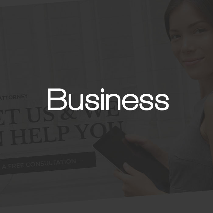 Business Wordpress Themes Test Drive