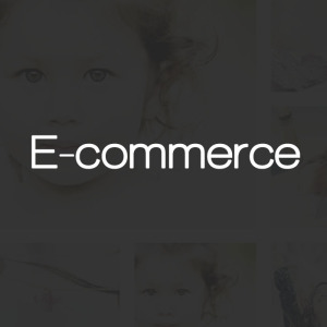 Ecommerce Test Drive our Themes in WordPress
